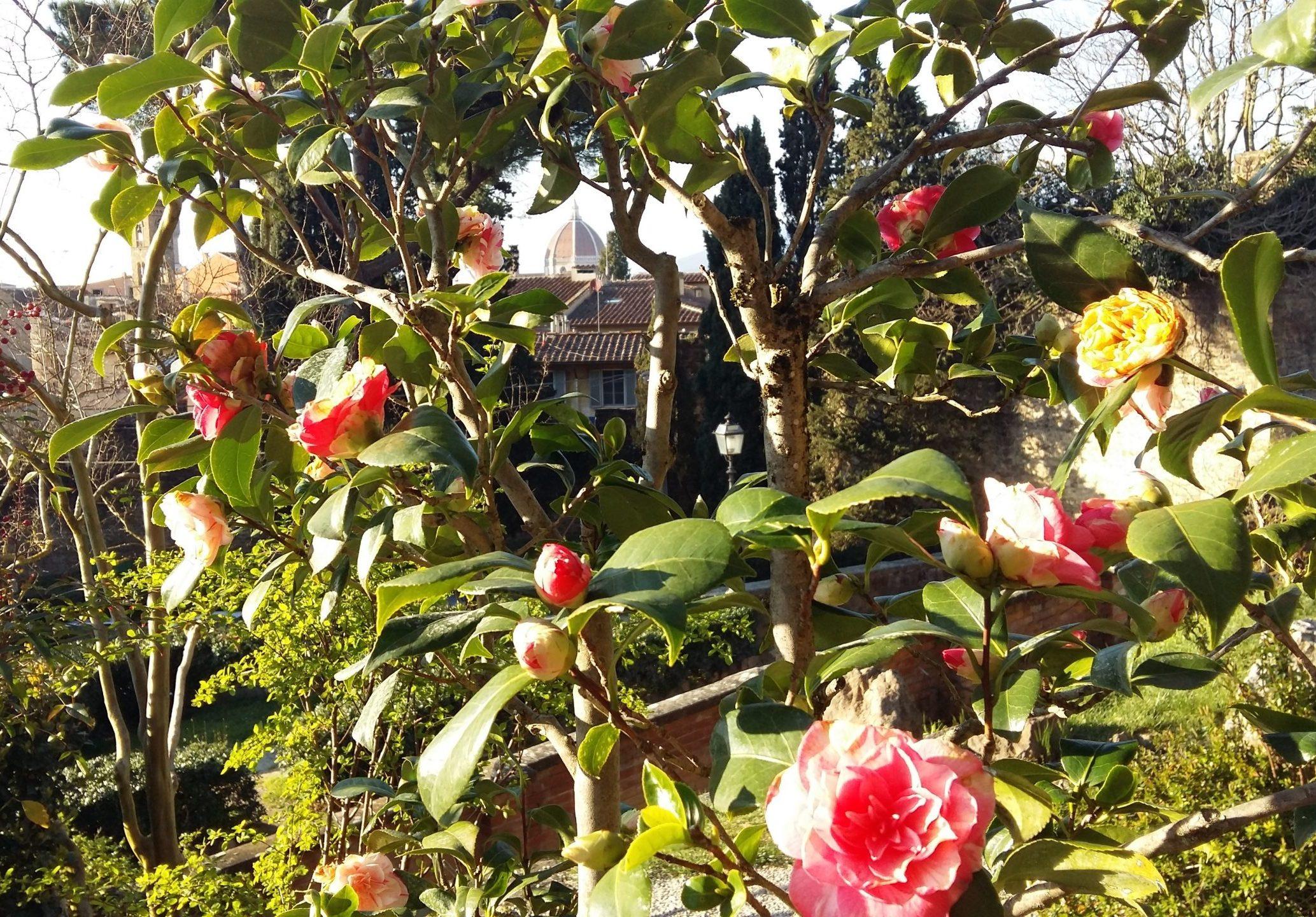 Jardín de las Rosas y Jardín del Iris
