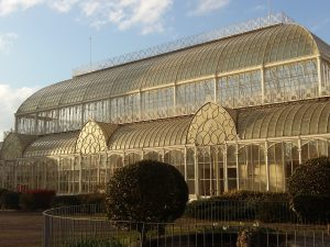 glasshouse erected by Giacomo Roster